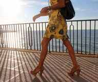 Frau, die entlang Seeseite geht Lizenzfreie Stockfotografie