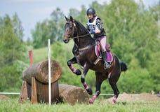 Frau, die eventer auf Pferd ist, gleicht den Protokollzaun aus Lizenzfreie Stockfotografie