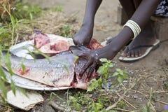 Frau, die Fische, Bor Sudan vorbereitet Lizenzfreie Stockfotografie