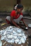 Frau, die Fische verkauft stockbilder