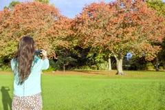 Frau, die Foto macht Stockfoto