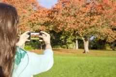 Frau, die Foto macht Stockfotos