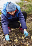 Frau, die Frühjahrsputz in einem Garten macht Stockbild