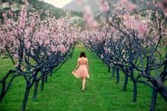 Frau, die Frühling auf dem grünen Gebiet mit blühenden Bäumen genießt Stockfotos