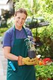 Frau, die Gartenarbeit im Kindertagesstättenshop erledigt Lizenzfreies Stockfoto