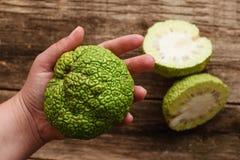 Frau, die grüne Ebenenlage der tropischen Frucht zeigt Stockfotos