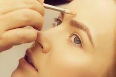 Frau, die Grundlagencreme auf Gesicht mit Bürste erhält stockfotos