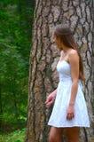 Frau, die hinter dem Baum sich versteckt Stockbild