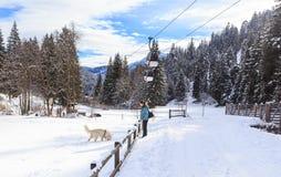 Frau, die ihren Hund ausbildet Ski Resort Laax Lizenzfreie Stockfotos