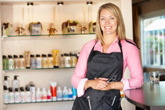 Frau, die im Frisurensalon arbeitet lizenzfreie stockfotos