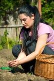 Frau, die im Garten pflanzt Lizenzfreie Stockfotografie