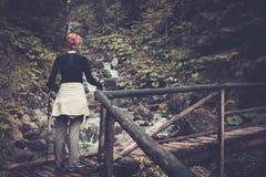 Frau, die im Gebirgswald wandert Stockbilder