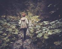 Frau, die im Gebirgswald wandert Stockfoto