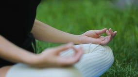 Frau, die im Park, Einheit mit Natur, gesunde Übungen im Freien meditiert stock video