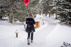 Frau, die im Wald an einem schneebedeckten Tag rotes Herz shap halten geht lizenzfreies stockfoto