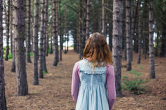 Frau, die im Wald steht und Bäume betrachtet Lizenzfreie Stockfotografie
