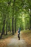Frau, die im Wald wandert Stockfoto