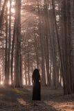 Frau, die im Zypresse-Baum-Wald steht Lizenzfreie Stockbilder