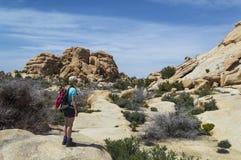Frau, die Joshua Tree National Park wandert Lizenzfreie Stockfotografie