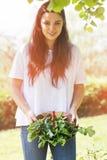 Frau, die kürzlich geerntetes Gemüse hält lizenzfreie stockfotos