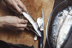 Frau, die Makrelenfische vorbereitet Stockfotografie