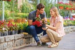 Frau, die mit Gärtner in Garten-Center spricht stockfoto