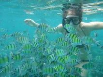 Frau, die mit gelben Fischen schnorchelt Lizenzfreie Stockfotografie