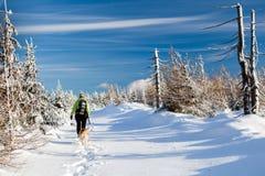 Frau, die mit Hund in den Winterbergen wandert Stockbild