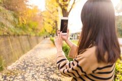 Frau, die Mobiltelefon im Park mit Herbst Ginkgobaum nimmt Lizenzfreie Stockbilder