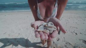 Frau, die Muscheln auf ihren Händen zeigt stock video footage