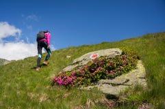 Frau, die nahe bei einem großen Felsen in den Bergen steht lizenzfreie stockbilder