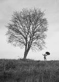 Frau, die nahe dem Baum mit Regenschirm steht Stockbild