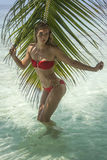 Frau, die nahe der Palme steht Stockbild