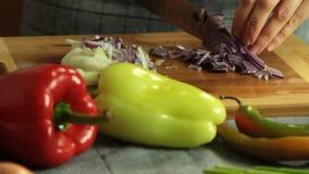Frau, die Quesadilla in der Küche kocht stock video