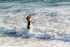 Frau, die in Richtung zu den Meereswogen geht Der Pazifische Ozean Los Angeles Stockfotos