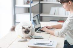 Frau, die am Schreibtisch mit ihrer Katze arbeitet Lizenzfreies Stockbild