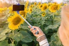 Frau, die selfie Stock macht Foto am Sonnenblumenfeld hält stockbilder