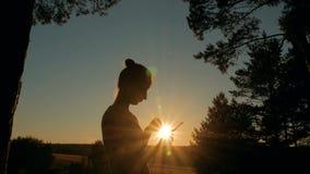 Frau, die Smartphone im Park bei Sonnenuntergang verwendet stock footage