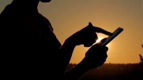 Frau, die Smartphone im Wald bei Sonnenuntergang verwendet Stockbild