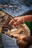 Frau, die Trockenfisch an Mapusa-Markt verkauft Stockfotos