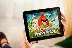 Frau, die verärgertes Vogel-Videospiel auf Apple-iPad 1 spielt Stockfotografie