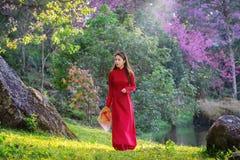 Frau, die Vietnam-Kultur traditionell im Kirschblütenpark trägt lizenzfreie stockfotos