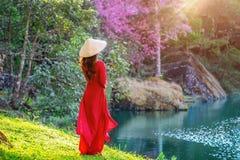 Frau, die Vietnam-Kultur traditionell im Kirschblütenpark trägt lizenzfreie stockfotografie