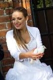 Frau, die weißen Vogel hält stockfotos