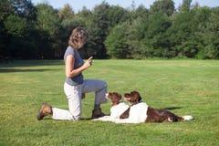 Frau, die zwei Hunde in einer Wiese ausbildet Stockbild