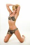 Frau in einem Bikini Stockfotos