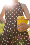 Frau in einem Braun punktierte das Kleid, das einen gelben Eimer voll von den organischen Zitronen hält Zitrusfruchternte im Gart lizenzfreie stockfotografie