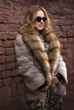 Frau in einem Pelzmantel Lizenzfreies Stockfoto