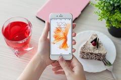 Frau entriegeln Telefon iPhone 6S Rose Gold über der Tabelle Lizenzfreie Stockfotografie