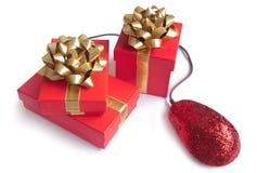 Frau erregt über die kaufenden Geschenke, die etwas auf ihrem Laptop Online- oder gewonnen worden sein würden Lizenzfreie Stockfotos